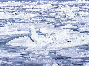 北海道流氷