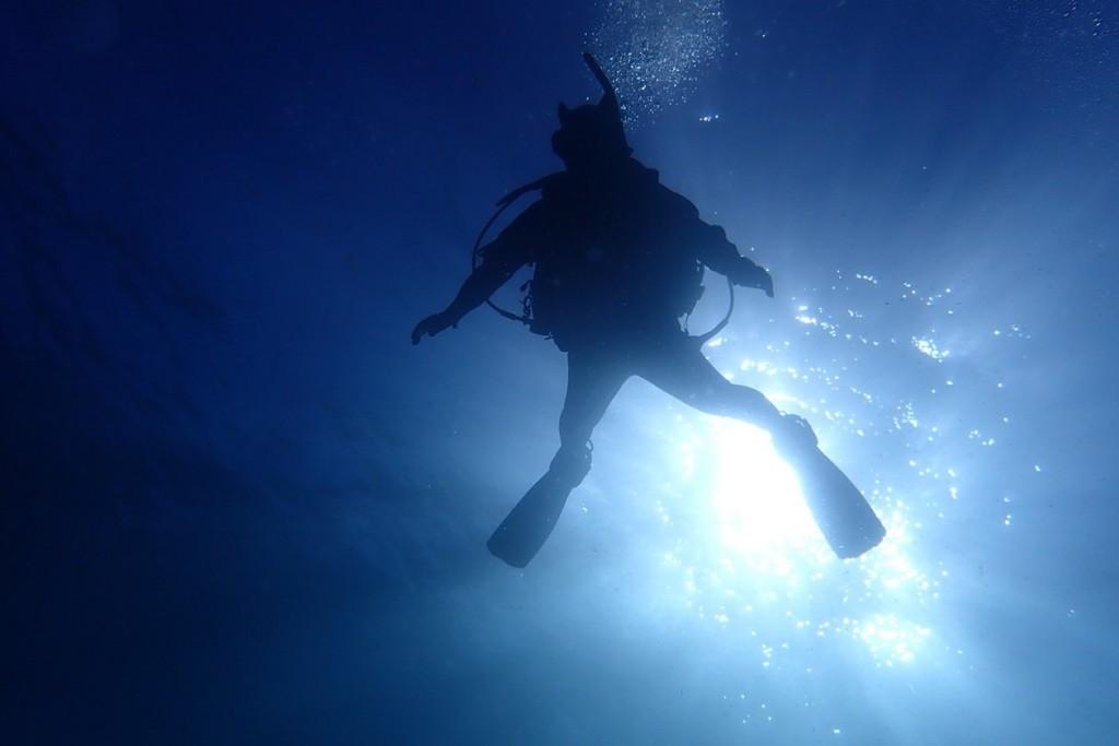 181123・24 AOW海洋実習_181128_0007