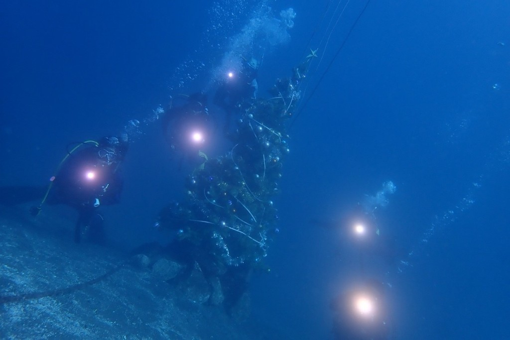 181123・24 AOW海洋実習_181128_0014