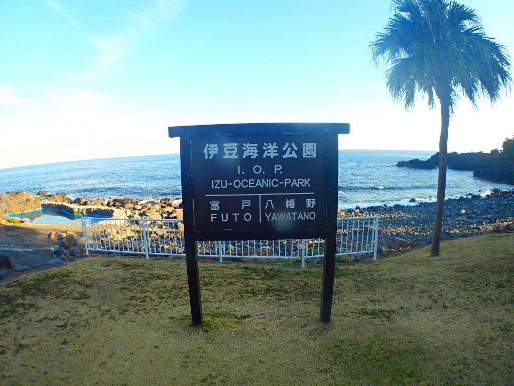 ぬくみ写真♡_190121_0040